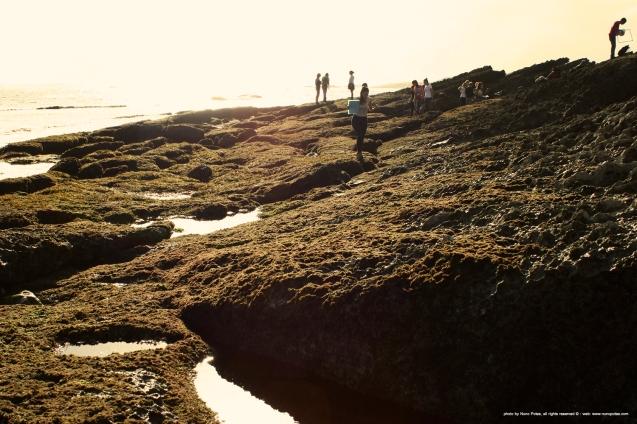 playa_de_Aramar_1